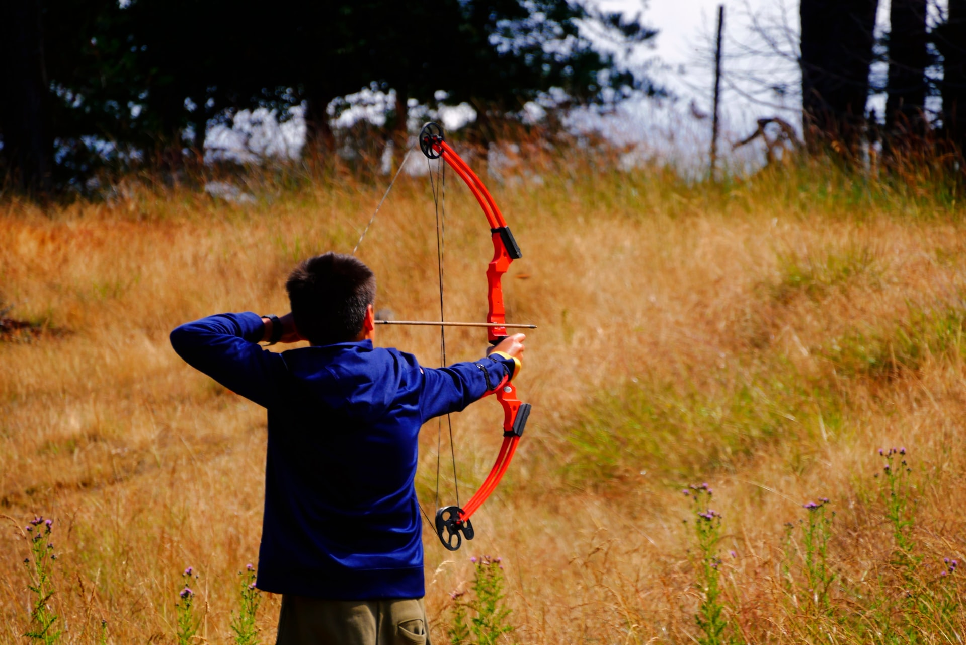 A detailed guide on primary archery bows.